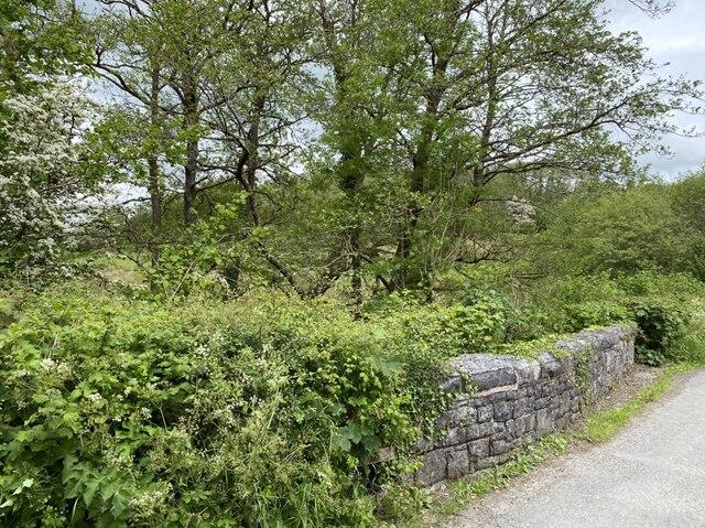Approaching the bridge over Afon Dulais