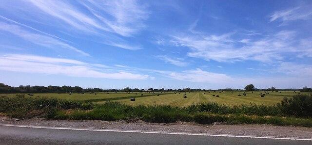 Fields off Wells Road