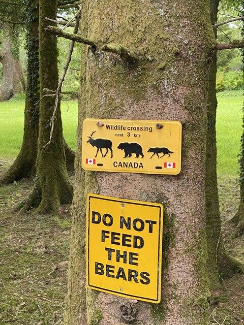Sound advice in rural Carmarthenshire