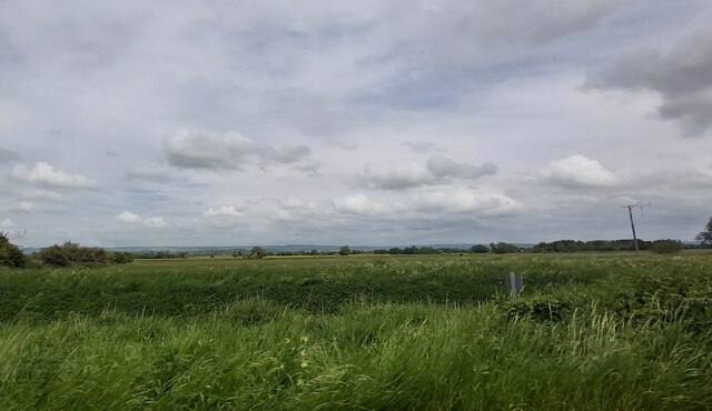 Farmland off Meare Road