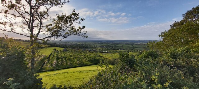 Orchard from Stone Down Hill