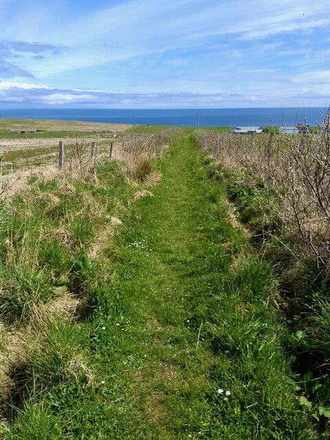 Footpath near Breckan