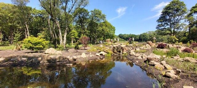 Chinese Garden - RHS Bridgewater