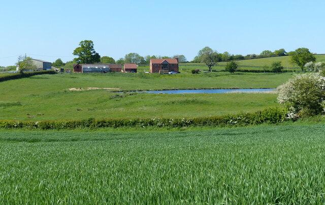 Sunny Bank Farm