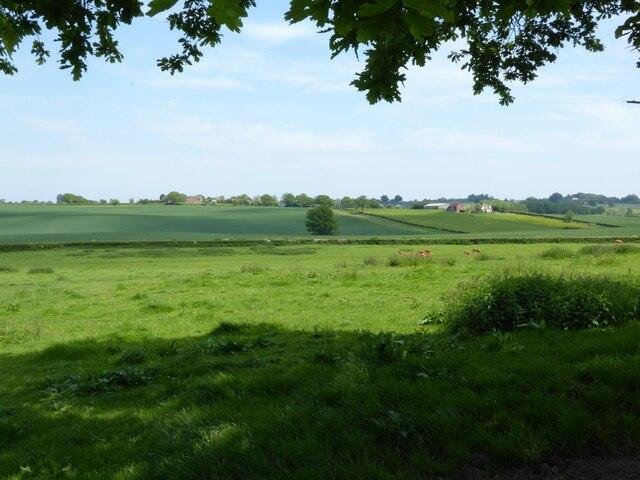 Farmland near Haughton