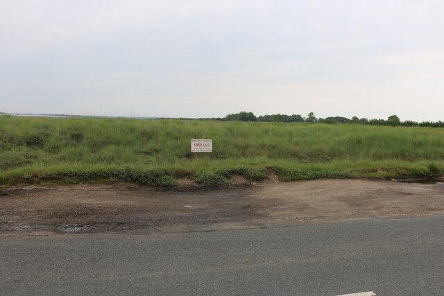 Grassland by East Mersea Road, West Mersea