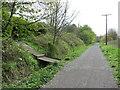 NZ8909 : Cinder Track near Whitby by Malc McDonald