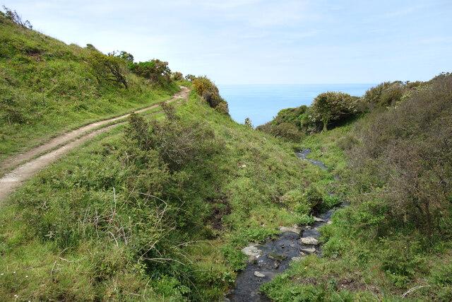 Coast Path by a Stream