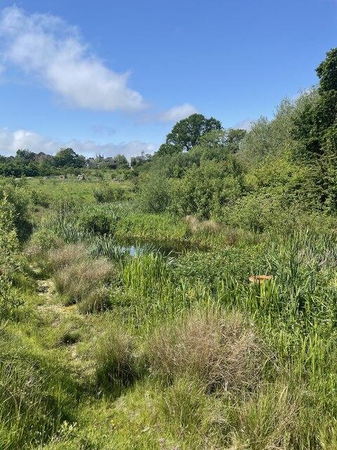 Pond near Whelpley Sewe