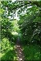 TL8646 : School Lane Approaching Long Melford by Glyn Baker