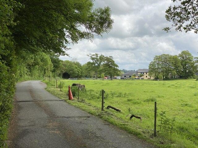 Track towards Gelli Aur Farm