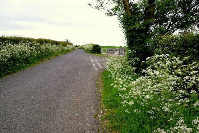 Drumeen Road, Lisboy