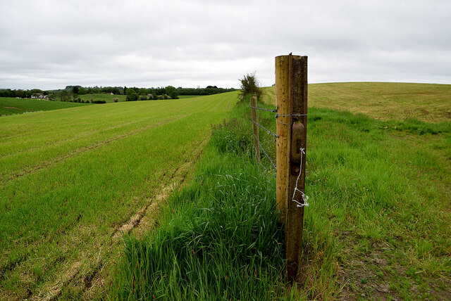 Country field at Lisboy