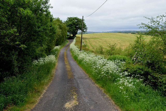 Lisboy Road, Lisboy