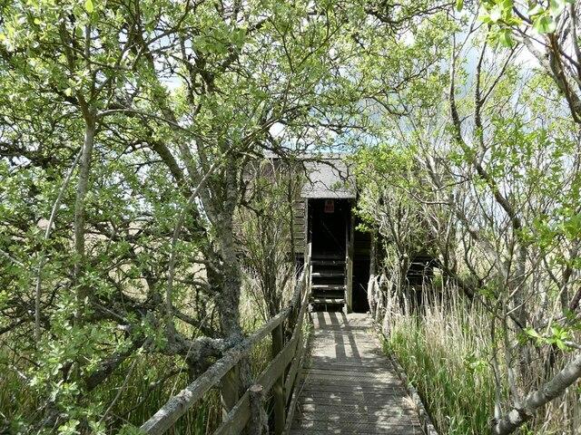 Fen Hide, Strathbeg Loch RSPB Reserve