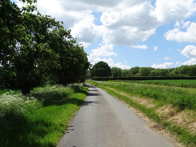 Road to Strethall Hall Farm