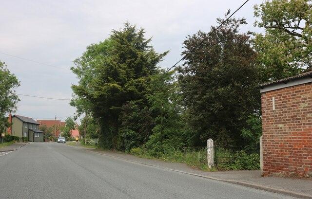 Lower Road, Peldon