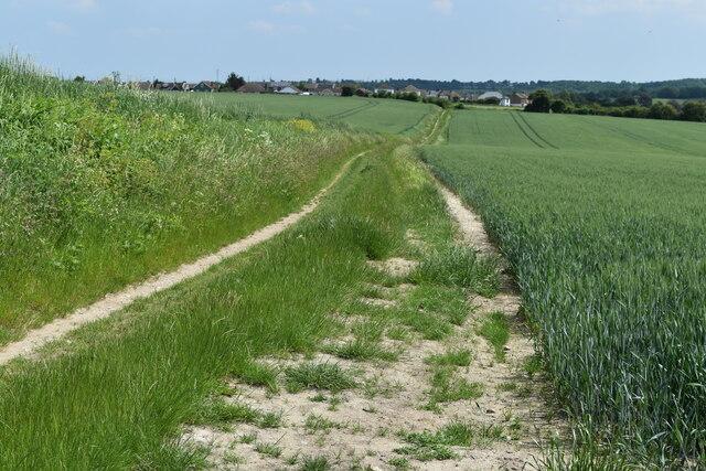 Field path to Hawley