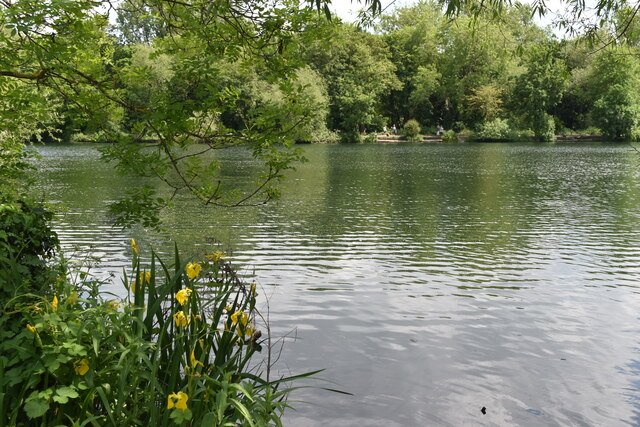 View from the path across Brooklands Lakes