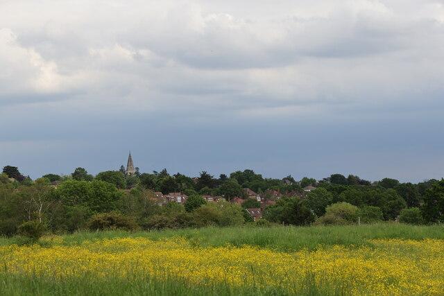 Buttercup Field, Merryhills Way, Enfield