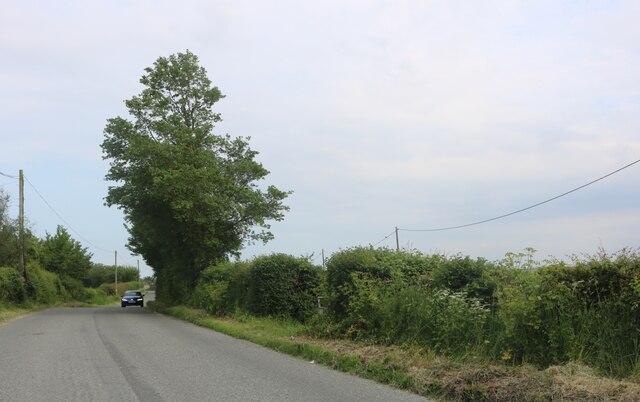 Mersea Road, Peldon