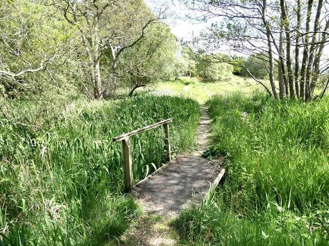 Footbridge on  the path to the Fen Hide