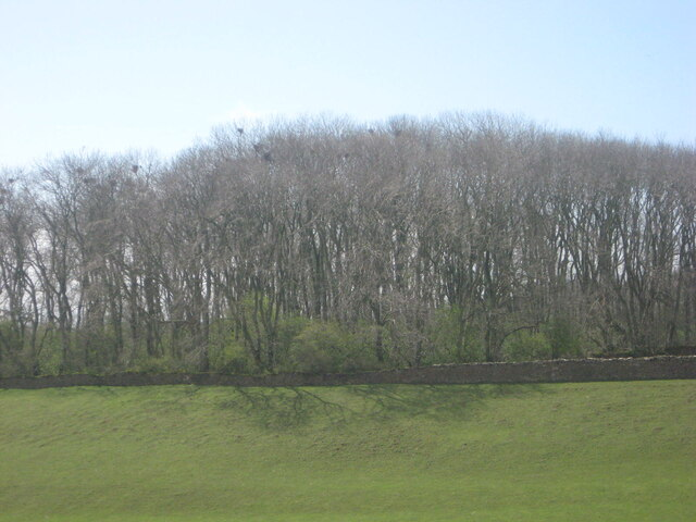 Parlourpiece Plantation