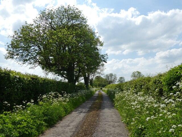Platterwell Lane