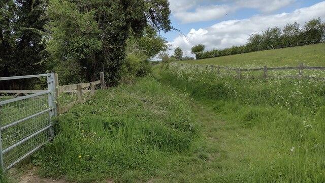 Path to Conygree Farm