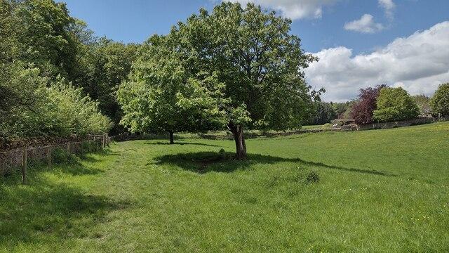 Path nearing Fulwell