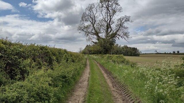 Bridleway heading towards the B4030