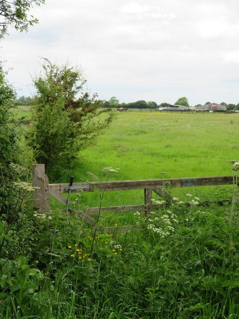 Bridleway off Pool Lane