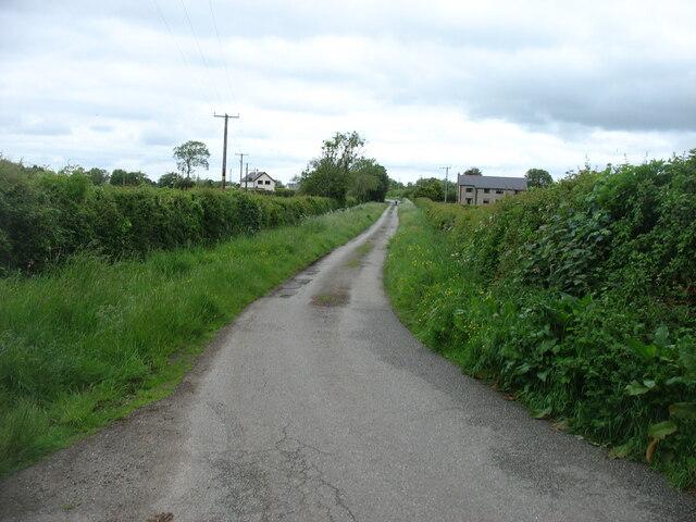 Minor road near Brynsiencyn