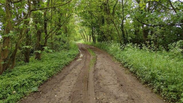 Green Lane track