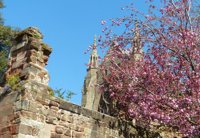 Blossom at Worcester Cathedral