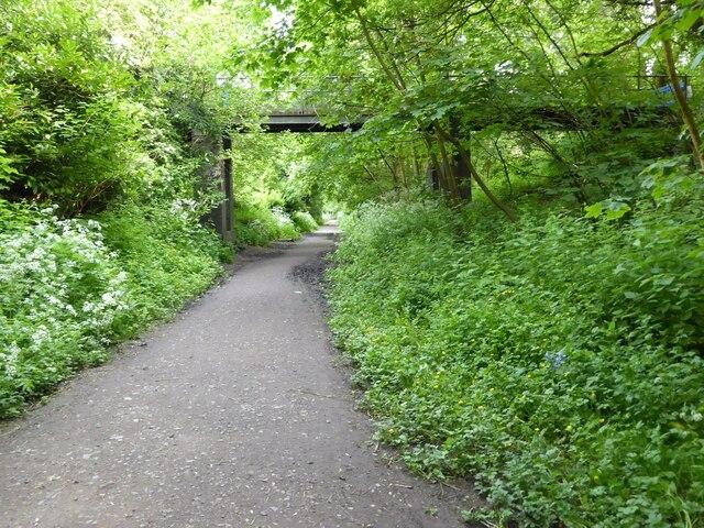 Footbridge crossing former railway track