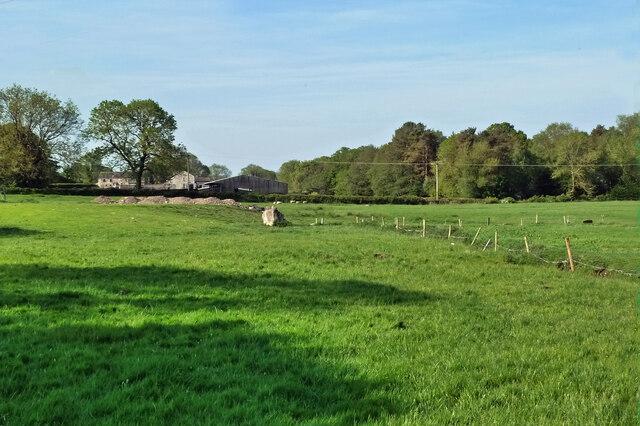 Hilderstone Farm view