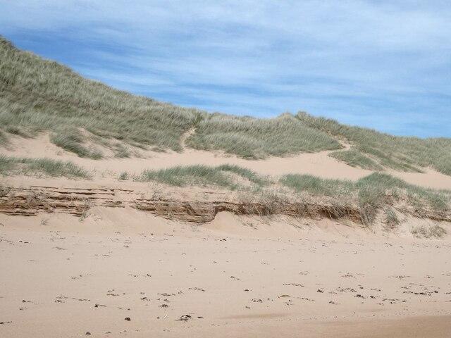 Sand dunes at Lunderton