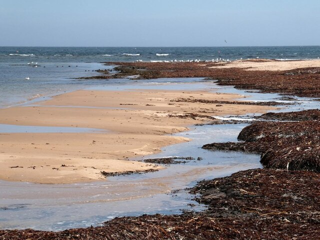 Sand and seaweed at Scotstown Head