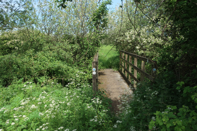 Path north from the River Wissey