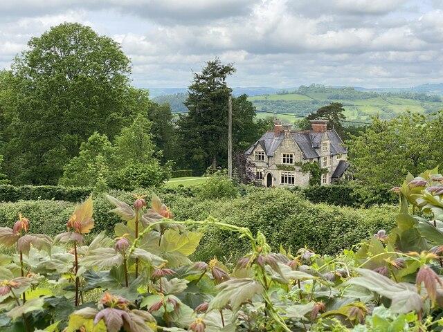 A glimpse over a hedge