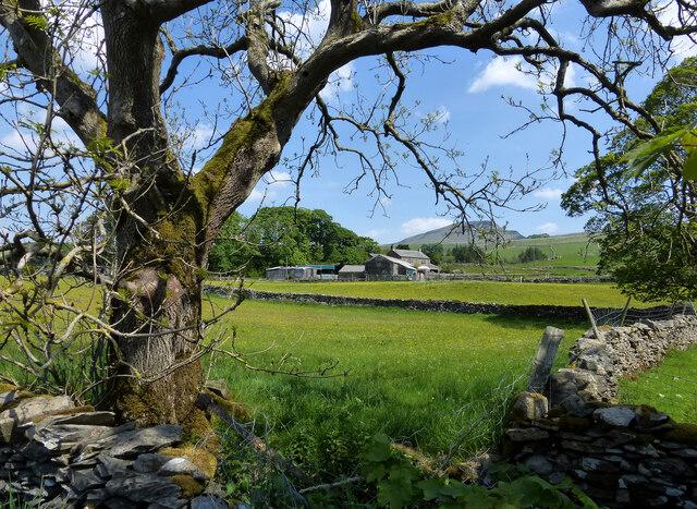 Dry Beck Farm view
