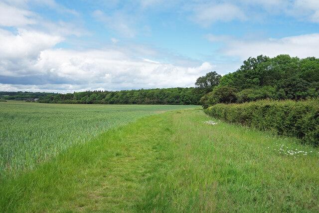 Fieldside Path, Coleshill Estate