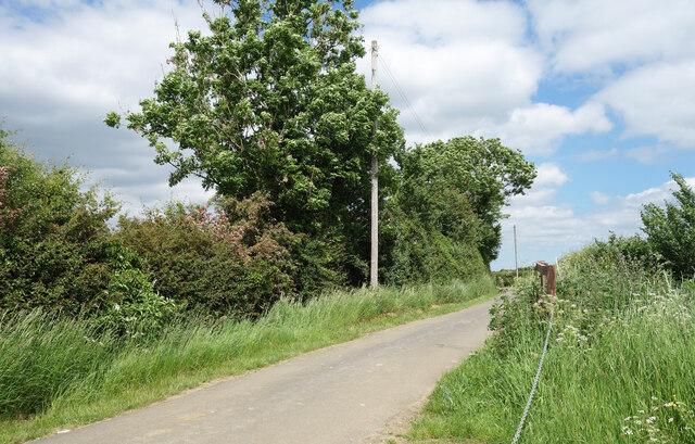 Along Chibridge Road