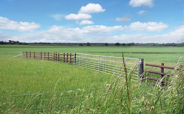 Flat Landscape west of Eynsham