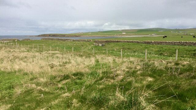 View north from Skara Brae