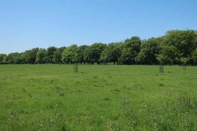 Wolterton Park