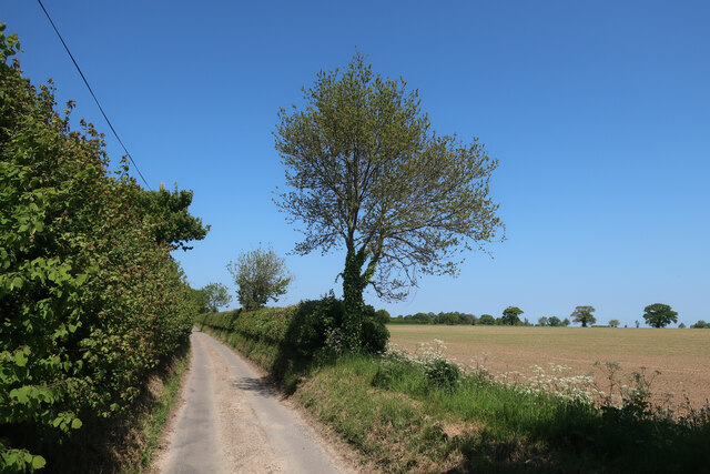 Church Road from Wickmere