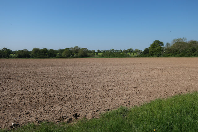 Field by Hall Road