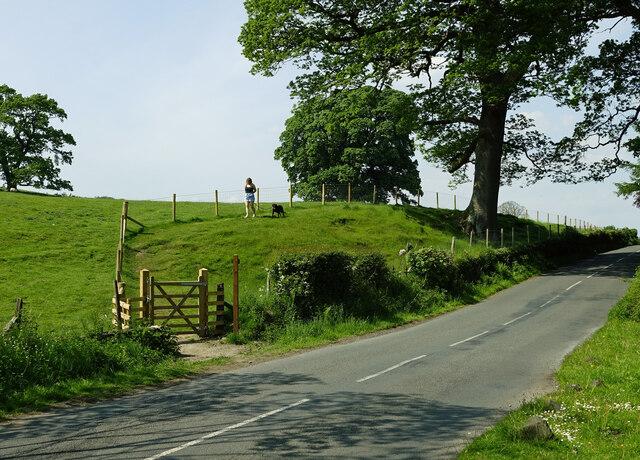Footpath near Kirkby Lonsdale
